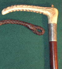 Staghorn handle of hunting whip